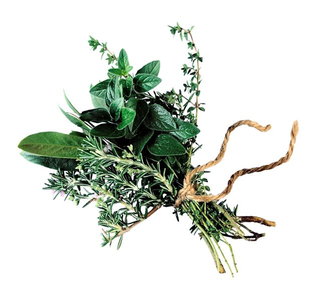 picture of herbs tied together to suggest cooking for example of recipe ideas for seniors